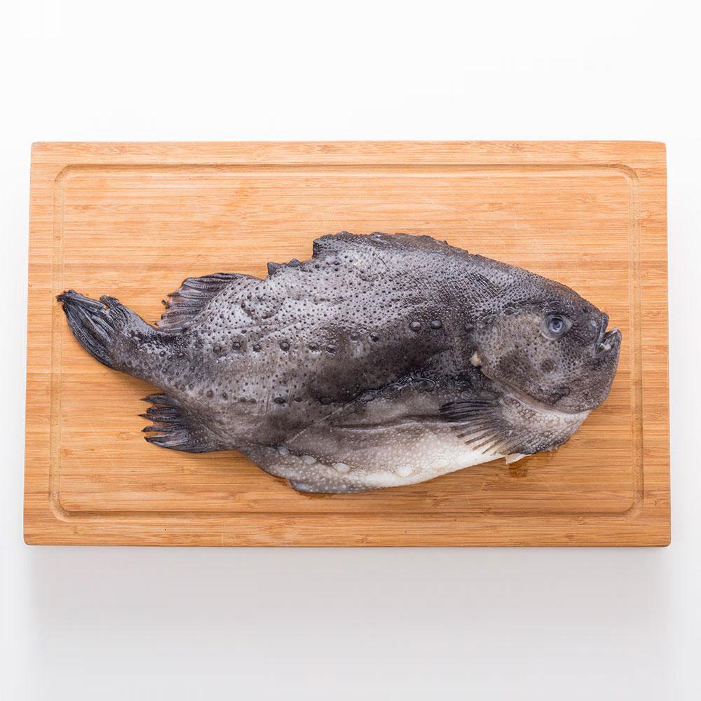 冰岛海参斑2斤