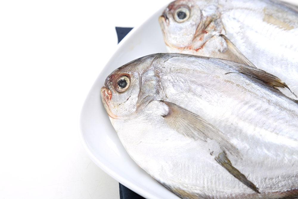 仓鱼属于发物,有慢性疾病和过敏性皮肤病的人不宜食用.
