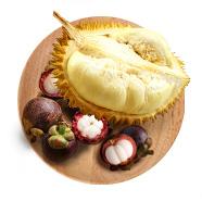 东南亚水果